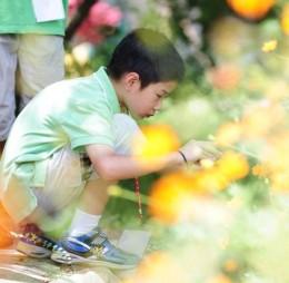 [預購] 【兒盟】2015「L.D.S.未來人兒童暑期營隊」