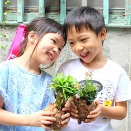 親子課程 | 植栽小玩童